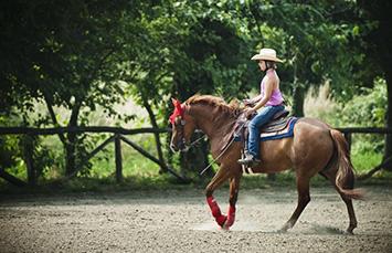 madamareining-scuola-equitazione-principianti