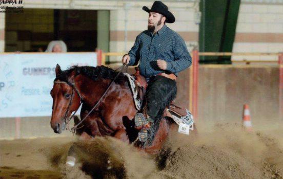 ir reining