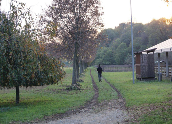 centro di equitazione milano