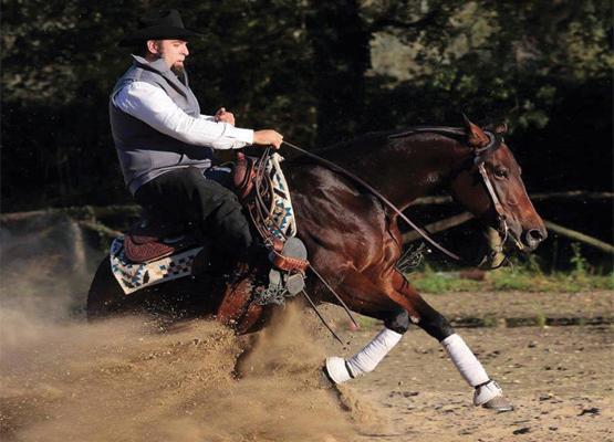 scuola di equitazione reining