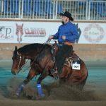 gare di reining