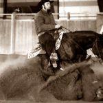 centro gare cavalli