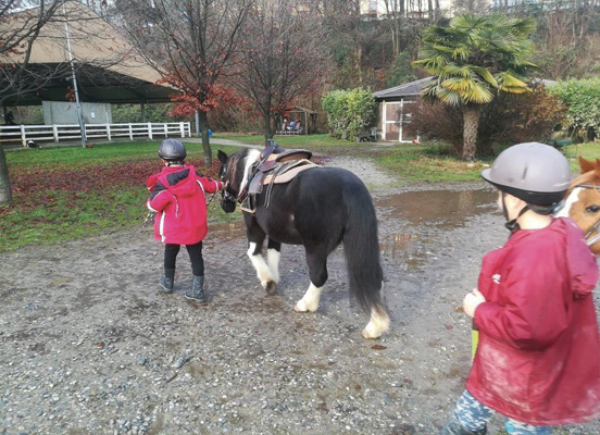 lezioni di reining